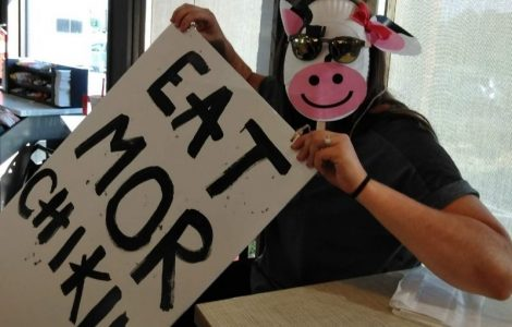 Moo-ing for Chick-fil-A!